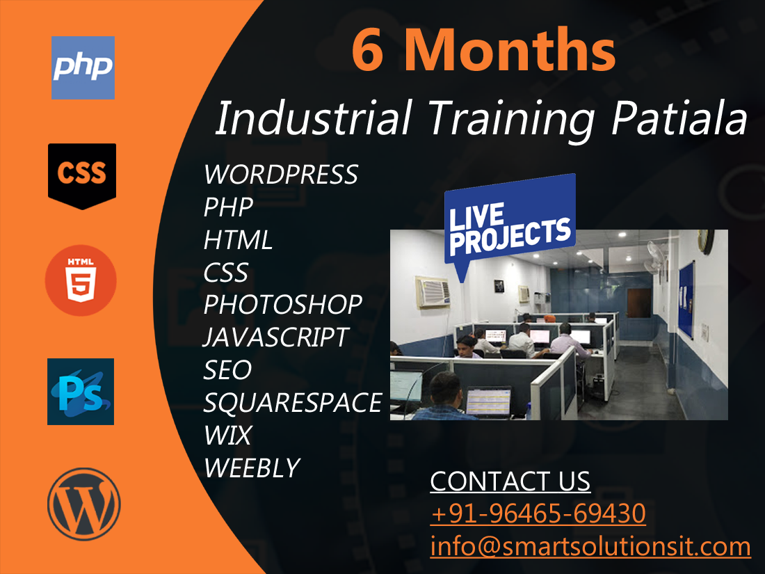6 Months Industrial Training In Patiala